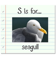 Flashcard alphabet S is for seagull vector image vector image