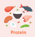 food high in protein isolated healthy ingredient vector image vector image