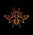 orange and yellow gradient stag beetle drawing vector image
