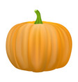 pumpkin icon realistic style vector image