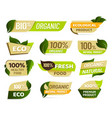 vegan emblem fresh nature product badge healthy vector image vector image