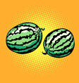 watermelon isolated on a neutral background vector image vector image