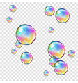 abstract foam soap water bubbles isolated on vector image