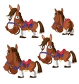 Brown horse in harness with different angles vector image vector image