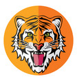 flat icon stylized face angry tiger vector image