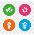Flowers icons Bouquet of roses symbol vector image vector image
