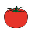 healthy fresh vegetable icon vector image vector image