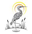 Heron Bird Background vector image vector image