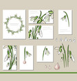 snowdrop set with visitcards and greeting vector image