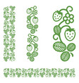 strawberry elegant monochrome ornament vector image vector image