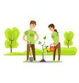 volunteers plant tree in city park people
