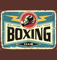 boxing club retro tin sign vector image