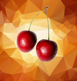 Cherry Polygon vector image