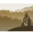Forest trees BG