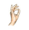 hand gestures ok vector image