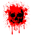 skull blood vector image vector image