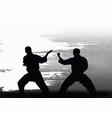 two men demonstrate karate vector image vector image