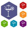 fruit cocktail icons set vector image vector image
