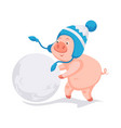 pig symbol of 2019 new year making big ball of vector image