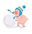 pig symbol of 2019 new year making big ball of vector image vector image