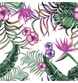 tropical exotic seamless composittion white vector image vector image