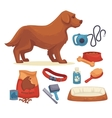 dogs set of accessories for vector image