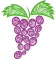 ornamental pattern Grape vector image