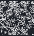 seamless pattern with hand drawn chalk succulent vector image vector image