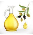 glass jug with oil and olives with leaves on a vector image vector image