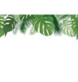 floral seamless pattern tropical palm tree leaves vector image vector image