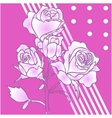 hiqh quallity rose isolated vector image vector image