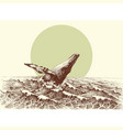 humpback whale jumping out of the water in the vector image vector image