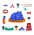 pet grooming concept cute sleeping cat and set of vector image
