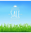 Sale Wooden Board vector image vector image