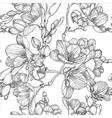 Spring Freesias Sketch vector image vector image