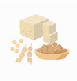 tofu and soy bean pod with soy seeds and soy meat vector image vector image