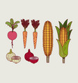 background to color set of vegetables vector image vector image