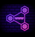 connectd globe neon icon elements navigation vector image vector image