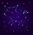 fantasy constellation of a pig vector image