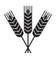 harvest wheat symbol vector image vector image