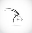 image an deer head impala vector image