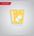isolated juice flat icon lemonade element vector image vector image