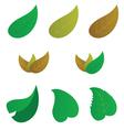 leaf color vector image vector image