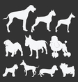 silhouette of dogs vector image vector image