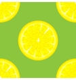 Sliced Citrus Seamless Pattern vector image vector image