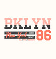 brooklyn new york athletic design for t-shirt vector image vector image