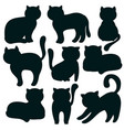 cat set of flat icons of feline silhouettes vector image vector image