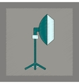 flat shading style icon professional lighting vector image vector image