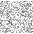 peony flower seamless pattern drawing hand vector image vector image