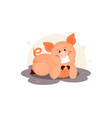 pig in the mud vector image vector image